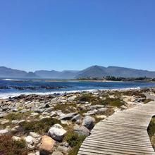 The Jack & Jasper Inn in Cape Town