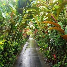 The Leaf Jimbaran Luxury Villas in Jimbaran