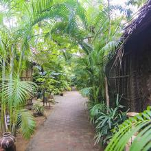 The Palm Trees Resort in Canacona