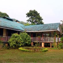 The Reserve Fagu in Kumai