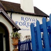 The Royal Forester - Inn in Kinvere