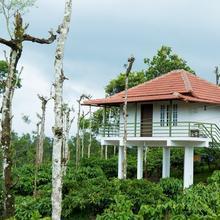 The Suvistara Resorts in Meenangadi