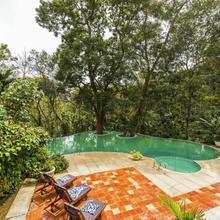 The Windflower Resort & Spa, Coorg in Coorg