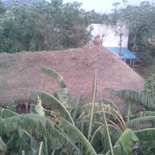 Thiru Peace Village Family Guest House And Cafe in Thiruvannamalai