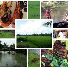 Thomman's farm stay in Kottayam
