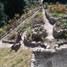 Tieedi Herb Garden Dwelling in Kurseong