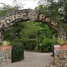 Tiger Paw Resort in Kalpetta
