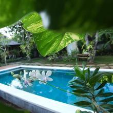 Timbis Homestay Bali in Jimbaran