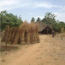 Tiru Arunachala Guest House in Tiruvannamalai