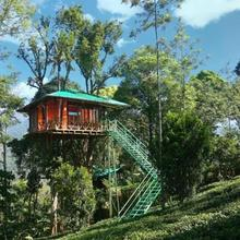 Treehouse With Wi-fi In Munnar, By Guesthouser 10760 in Udumbanshola