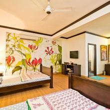 Trendy Bed & Breakfast in New Delhi