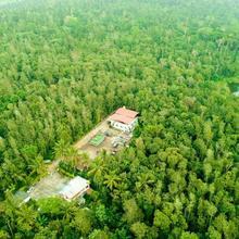 Tri Woods Plantation Farm Stay in Sakleshpur