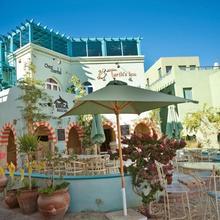 Turtle's Inn Hotel in Al Ghardaqah