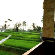 Ubud Sawah Homestay in Bali