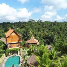 Umah Hoshi in Bali