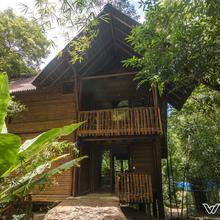 Uravu Bamboo Grove in Meppadi