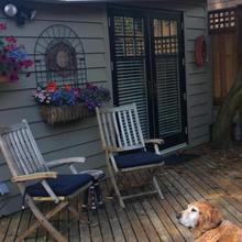 Vancouver Cedar Cottage in Vancouver
