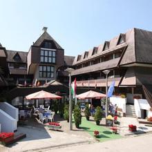 Viking Hotel in Pusztaszabolcs