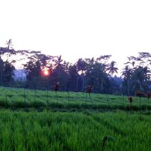 Villa Neyang in Bali