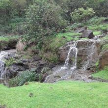 Villa - Where Nature Is Like Home in Waki