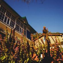 Vista Backpackers Hostel in Bhimtal