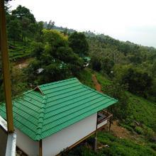 Vythiri Hills in Tariyod