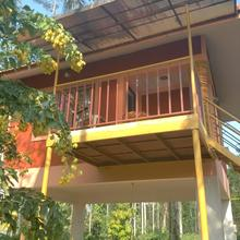 Wayanad Green Park 3 Bhk Villa in Meppadi