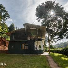 Whispering Willows - A Wandertrails Showcase in Madumalai