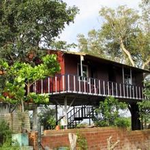 Wild Breeze Resorts in Bandipur
