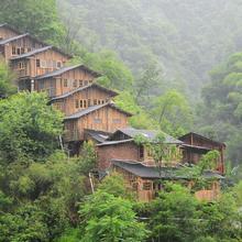 Wind's Wood in Zhangjiajie