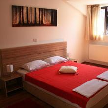 X Hostel Bucharest in Grefoaicele