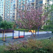 Xinrun Homestay in Suzhou