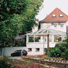 Zum Grünen Baum in Frankfurt
