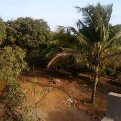Aamrai Resort in Malvan