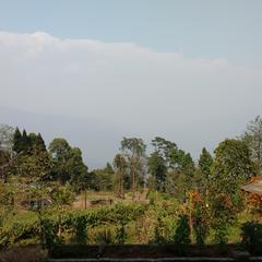 Aviraj Homestay (4 Bed Room) in Darjeeling