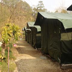 Camp Pine Riviera in Mukteshwar
