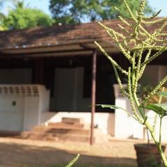 Chedi Spring Valley in Thrissur