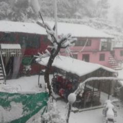 Comfortable Homestay Near Mukteshwar Temple in Mukteshwar Nainital