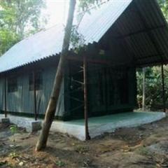 Deep Jungle Home in Masinigudi