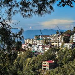 Dhanlaxmi Apartments in Shimla