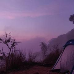 Dremzstay Hill View Camping in Kumudi