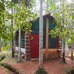 Eden Homestay in Gokarna
