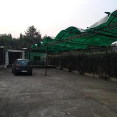 Green Dera Mandi Farms in Dera Mandi