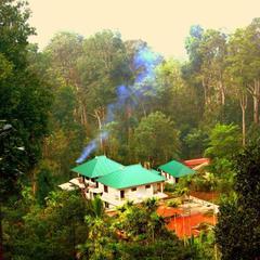 Green Shades in Munnar
