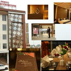 Hotel Golden Fortune in Azamgarh