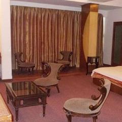 Hotel Metro Regency in Meerut