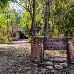 Jim's Jungle Retreat in Corbett