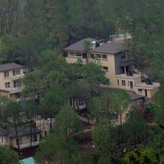 Jungle Lodge Resort in Kasauli