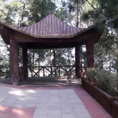 Kasauli Hills Resort in Kasauli