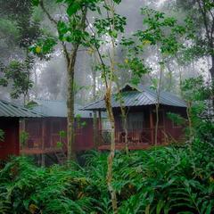 Monsoon Retreats in Thekkady